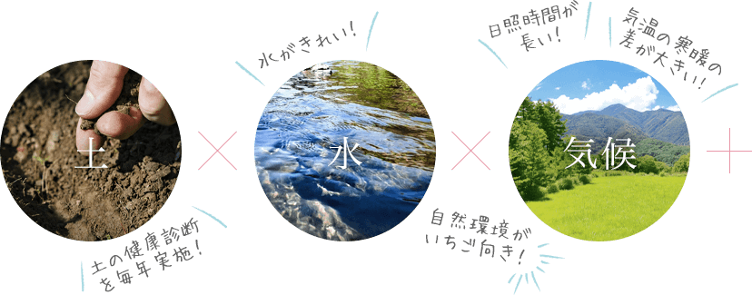 土✕水✕気候+